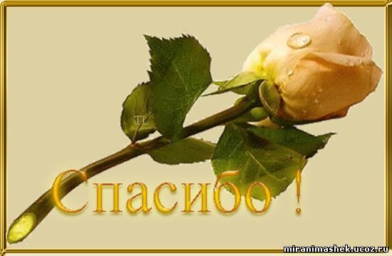 http://miranimashek.com/_ph/140/2/981413342.jpg