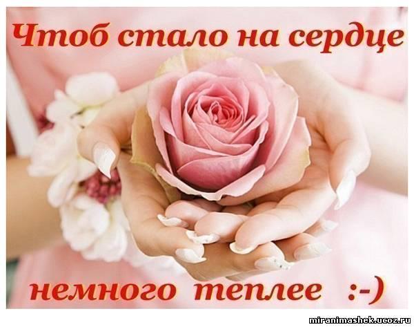 http://miranimashek.com/_ph/146/2/648846175.jpg