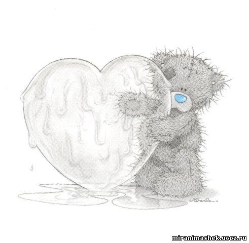 красивые Картинки, рисунки Мишки Тедди бесплатно, без регистрации, без смс