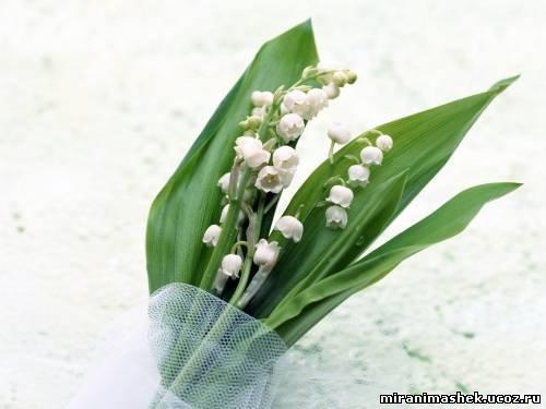Если Вам понравилась картинка Букет из ландышей из раздела Цветы Ландыши , Вы можете принять посильное участие в...