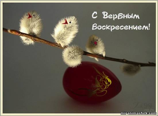 http://miranimashek.com/_ph/235/2/220973621.jpg