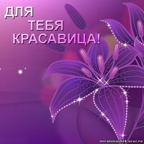 http://miranimashek.com/_ph/358/2/352579471.jpg
