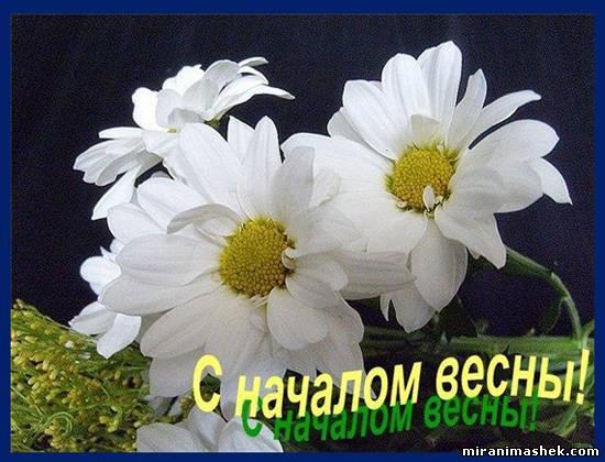 Картинки весны - e31e