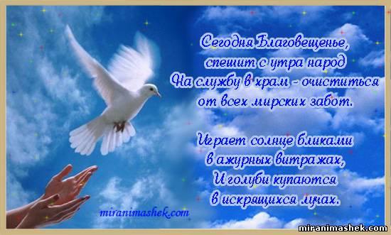 http://miranimashek.com/_ph/492/2/32573603.jpg