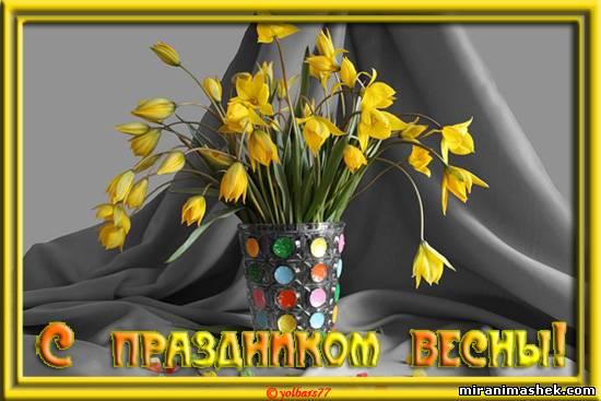 http://miranimashek.com/_ph/622/2/469806529.jpg