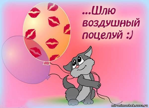 http://miranimashek.com/_ph/135/2/298851431.jpg