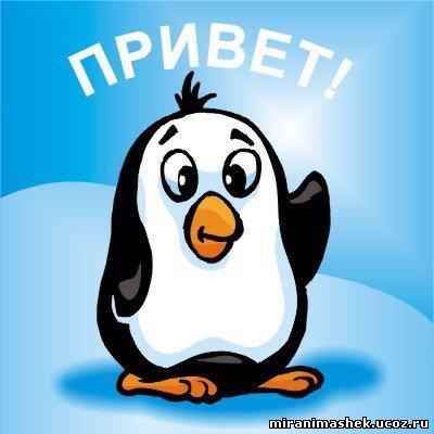 http://miranimashek.com/_ph/138/2/763865182.jpg