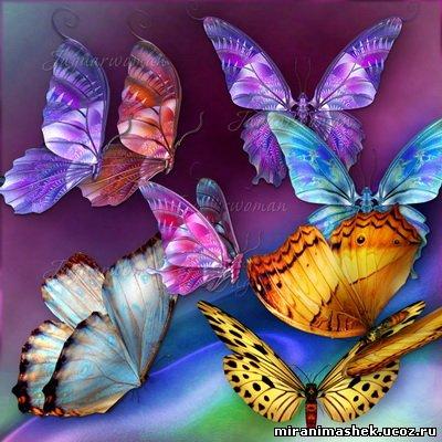 http://miranimashek.com/_ph/157/2/159553523.jpg