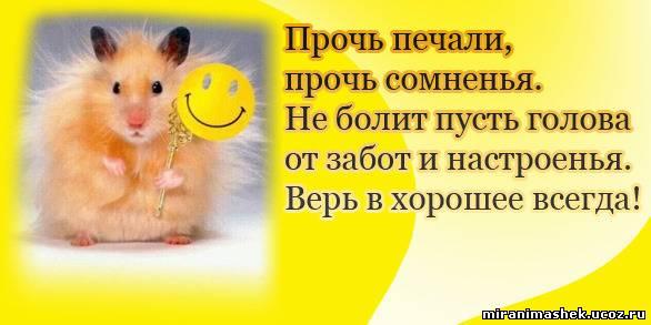 http://miranimashek.com/_ph/271/2/354616444.jpg